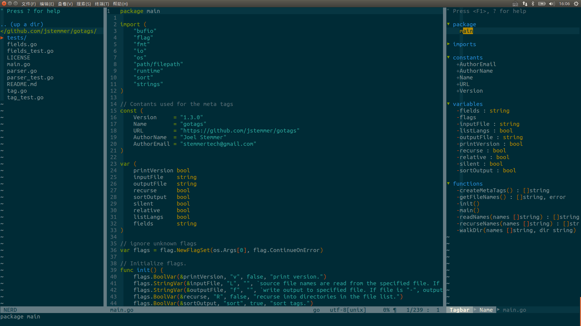 Image of Golang Environment in Vim